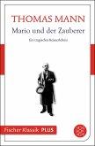 Mario und der Zauberer (eBook, ePUB)