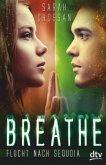 Flucht nach Sequoia / Breathe Bd.2