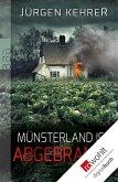 Münsterland ist abgebrannt / Münster Reihe Bd.1 (eBook, ePUB)