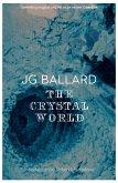The Crystal World (eBook, ePUB)