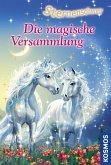 Die magische Versammlung / Sternenschweif Bd.17 (eBook, ePUB)