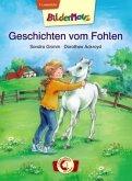 Bildermaus - Geschichten vom Fohlen