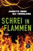 Schrei in Flammen / Katrine Wraa Bd.2