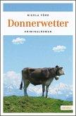 Donnerwetter / Kommissar Weinzierl Bd.9