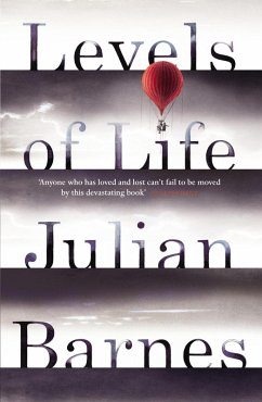 Levels of Life (eBook, ePUB) - Barnes, Julian