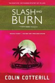 Slash and Burn (eBook, ePUB)