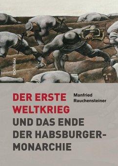 Der Erste Weltkrieg - Rauchensteiner, Manfried