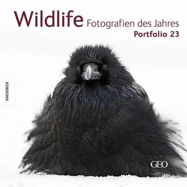 wildlife fotografien des jahres portfolio 23 buch. Black Bedroom Furniture Sets. Home Design Ideas