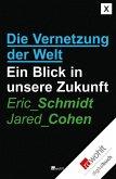 Die Vernetzung der Welt (eBook, ePUB)