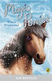 Magic Ponies: Winter Wonderland (eBook, ePUB)