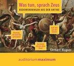 Was tun, sprach Zeus, 1 Audio-CD