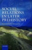 Social Relations in Later Prehistory (eBook, PDF)