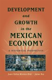 Development and Growth in the Mexican Economy (eBook, ePUB)