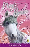 Magic Ponies: A Special Wish (eBook, ePUB)