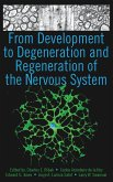 From Development to Degeneration and Regeneration of the Nervous System (eBook, PDF)