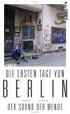 Die ersten Tage von Berlin (eBook, ePUB)
