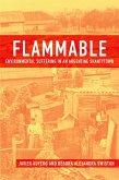 Flammable (eBook, ePUB)
