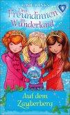 Auf dem Zauberberg / Drei Freundinnen im Wunderland Staffel 1 Bd.5 (eBook, ePUB)