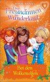 Bei den Wolkenelfen / Drei Freundinnen im Wunderland Staffel 1 Bd.3 (eBook, ePUB)