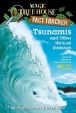 Tsunamis and Other Natural Disasters (eBook, ePUB)