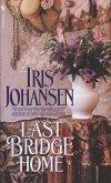Last Bridge Home (eBook, ePUB)