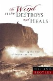 The Wind That Destroys and Heals (eBook, ePUB)