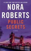 Public Secrets (eBook, ePUB)
