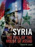 Syria (eBook, ePUB)