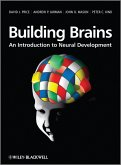 Building Brains (eBook, PDF)