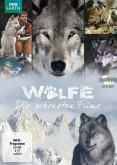 Wölfe - Die schönsten Filme DVD-Box