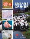 Diseases of Sheep (eBook, PDF)