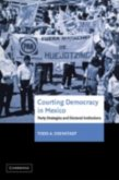 Courting Democracy in Mexico (eBook, PDF)