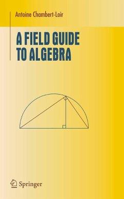 A Field Guide to Algebra (eBook, PDF) - Chambert-Loir, Antoine