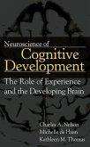 Neuroscience of Cognitive Development (eBook, ePUB)