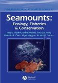 Seamounts (eBook, PDF)