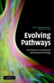 Evolving Pathways (eBook, PDF)