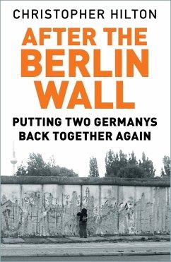 After the Berlin Wall (eBook, ePUB)