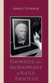 Knowledge and Self-Knowledge in Plato's Theaetetus (eBook, ePUB)