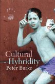 Cultural Hybridity (eBook, PDF)