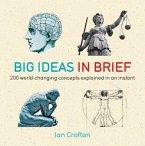 Big Ideas in Brief (eBook, ePUB)