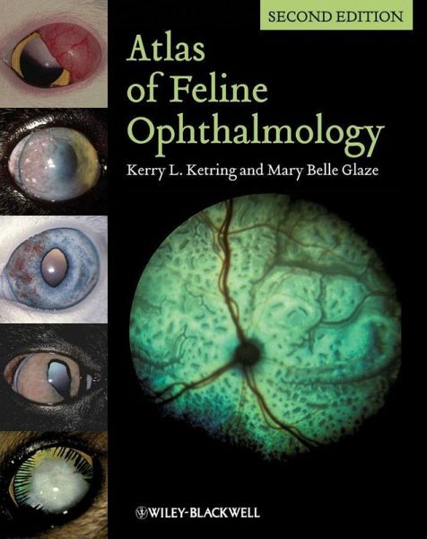 Atlas Of Clinical Ophthalmology Pdf