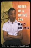 Notes of a Native Son (eBook, ePUB)