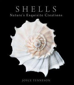 Shells (eBook, ePUB) - Tenneson, Joyce