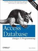 Access Database Design & Programming (eBook, ePUB)