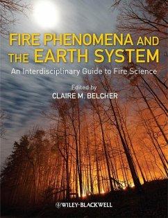 Fire Phenomena and the Earth System (eBook, ePUB)