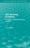 The Growing Economy (eBook, ePUB)