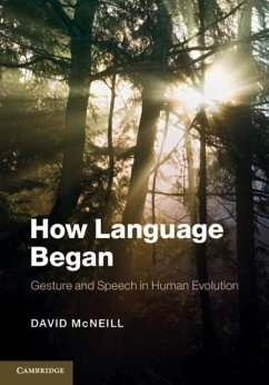How Language Began (eBook, PDF) - Mcneill, David
