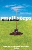 Small Steps (eBook, ePUB)
