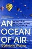 An Ocean of Air (eBook, ePUB)