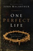 One Perfect Life (eBook, ePUB)